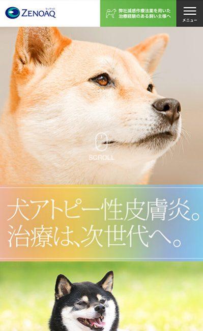 犬アトピー性皮膚炎に関する情報サイト|ゼノアック