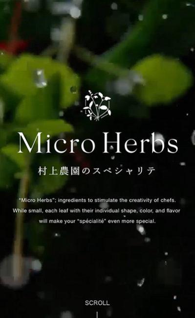 マイクロハーブ 〜村上農園のスペシャリテ〜