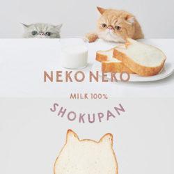 ねこねこ食パンのレスポンシブWebデザイン