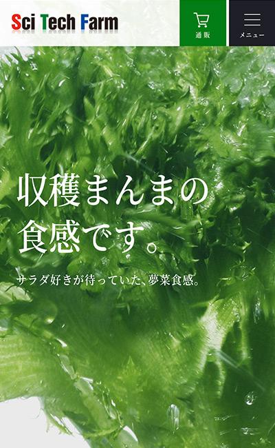 夢菜・株式会社サイテックファーム