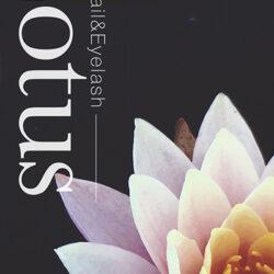 Lotus – ロータス